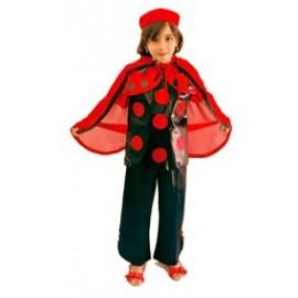 Hero ladybug costume